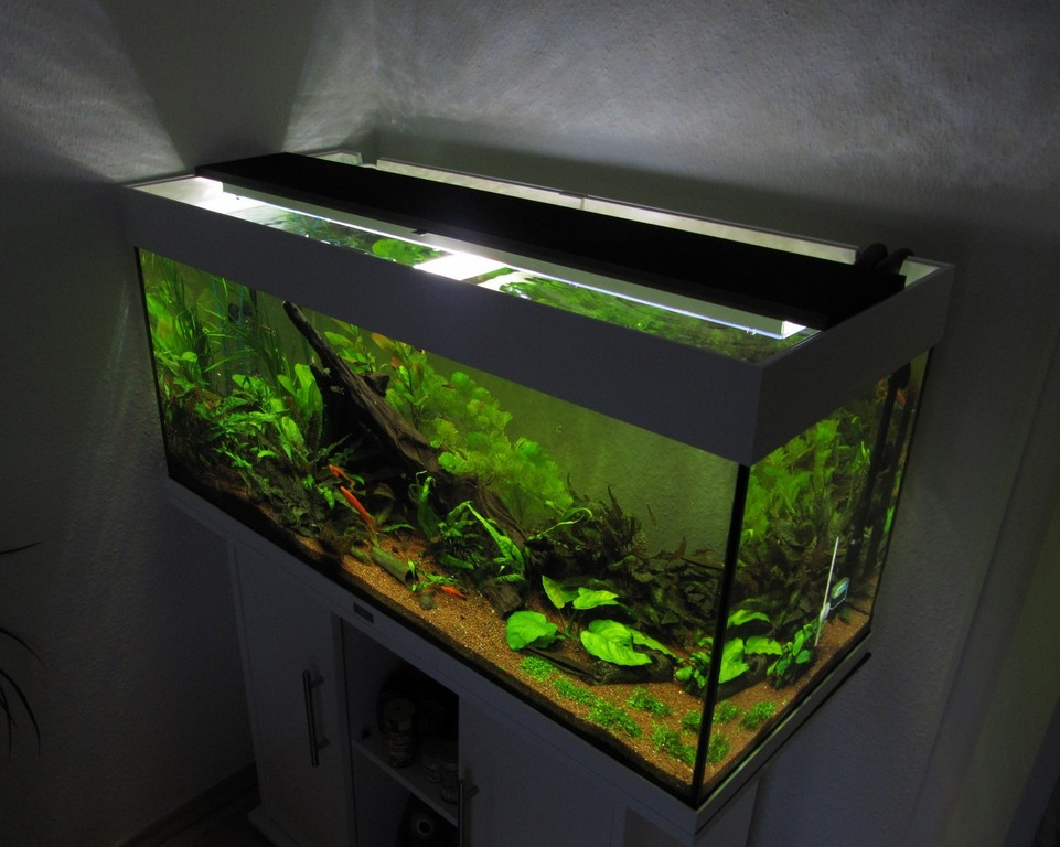 Aquarium Led Beleuchtung Selber Bauen Schullebernds Technikwelt throughout sizing 1790 X 1430