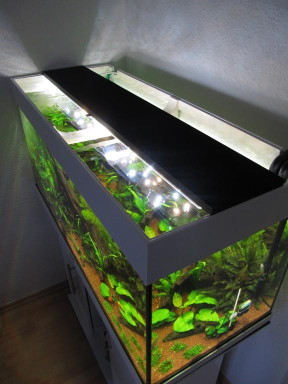 Aquarium Led Beleuchtung Selber Bauen Schullebernds Technikwelt with regard to dimensions 1024 X 1365