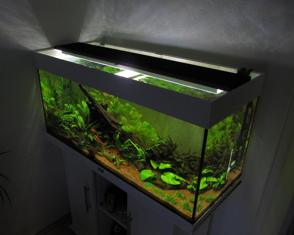 Aquarium Led Beleuchtung Selber Bauen Schullebernds Technikwelt with regard to measurements 1790 X 1430