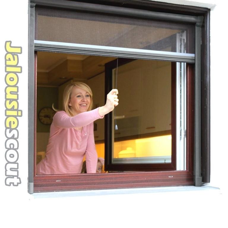 Atemberaubende Ideen Alu Insektenschutz Fenster Aldi Und intended for proportions 1000 X 1000
