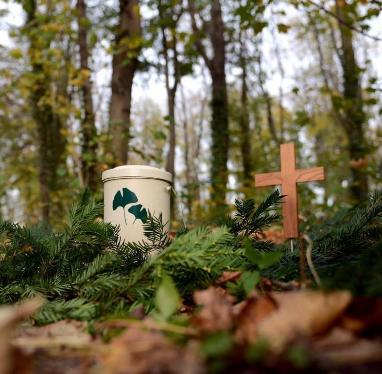 Bestattungen Deutsche Umgehen Den Friedhofszwang Welt throughout size 1024 X 1001