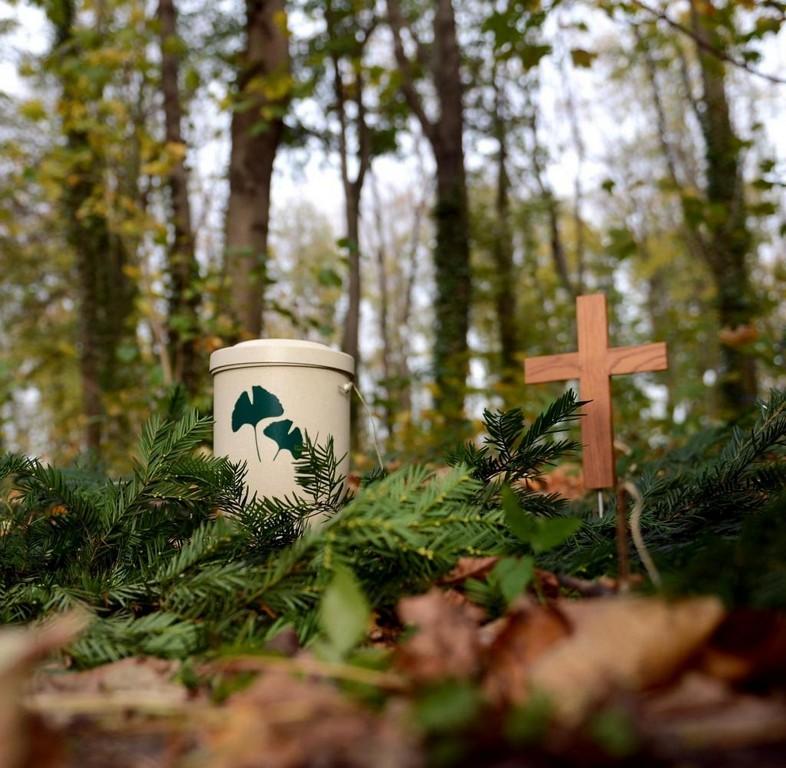 Bestattungen Deutsche Umgehen Den Friedhofszwang Welt with regard to size 1024 X 1001