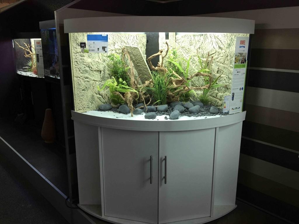 Das Juwel Trigon 350 Hat Das Rennen Gemacht Aquariumreport within size 1600 X 1200