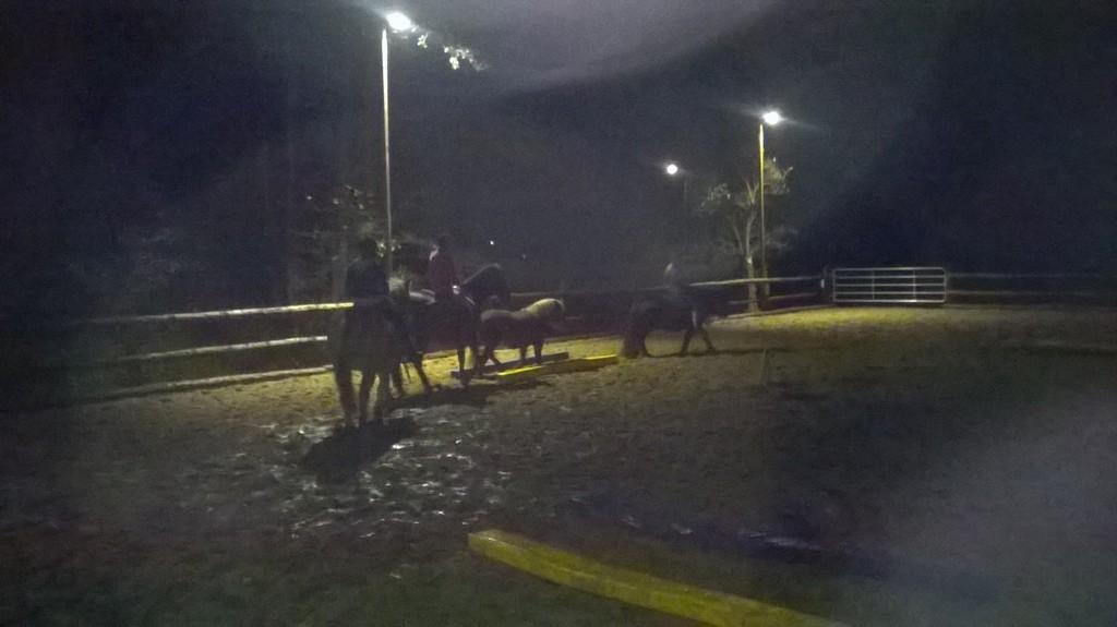 Die Lustige Ponyschule intended for sizing 1600 X 899