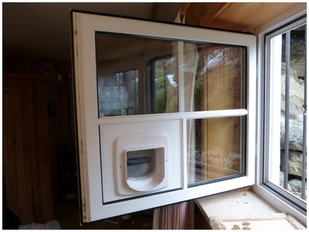 Fenster Einbauen Kosten 235214 Katzenklappe Fenster Einbauen in proportions 1230 X 923