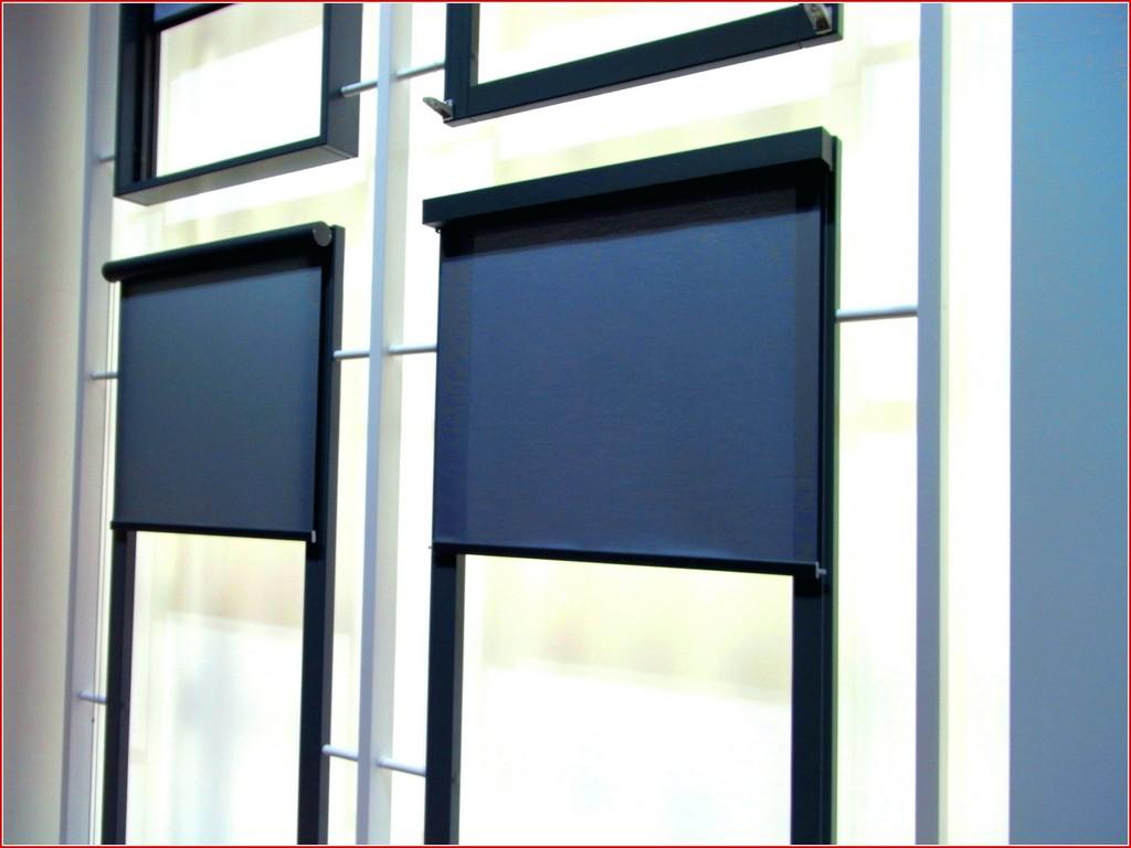 Fenster Sonnenschutz 290201 Fenster Herrlich Fenster Von Auen throughout proportions 3648 X 2736