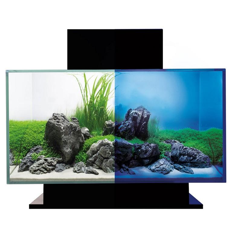 Fluval Edge 20 23 L Aquarien Set Schwarz Mit Led Beleuchtung H 15034 in dimensions 1000 X 1000