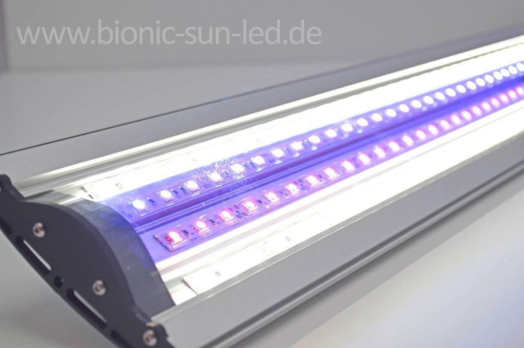 Froschmichl 79211 Denzlingen Beleuchtung intended for size 2048 X 1361