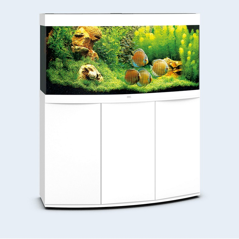 Juwel Aquarium Vision 260 Led pertaining to sizing 1958 X 1958