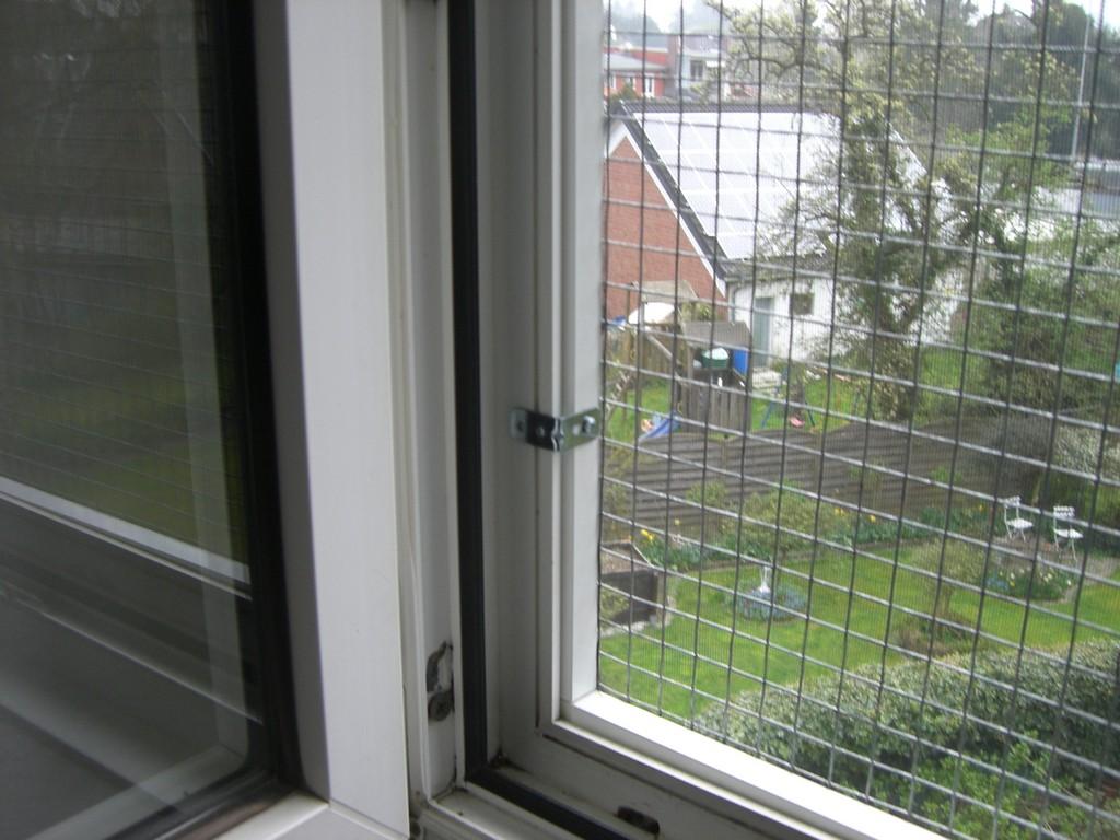 Katzennetz Fr Fenster Sicherheitsrahmen Zur Fenstersicherung with measurements 2560 X 1920
