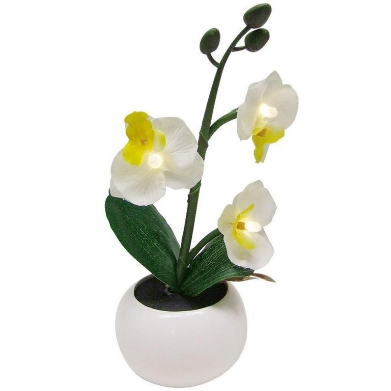 Led Beleuchtung Knstliche Orchidee Im Blumentopf Real in sizing 1024 X 1024