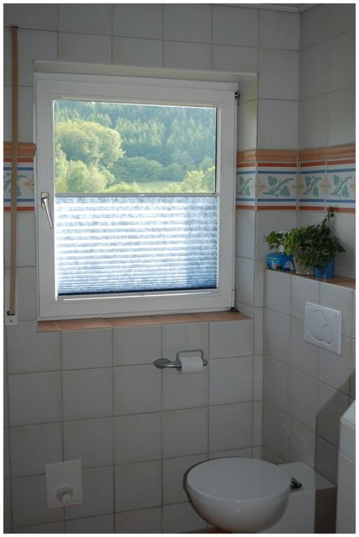 Plissee Fr Bodentiefe Fenster 474792 Bad Fenster Gardinen Bad regarding measurements 1024 X 1530