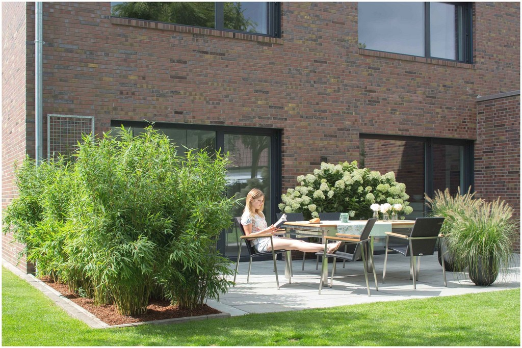 Sichtschutz Pflanzen Terrasse 404680 Luxus Pflanzen Als Sichtschutz inside measurements 3000 X 2000