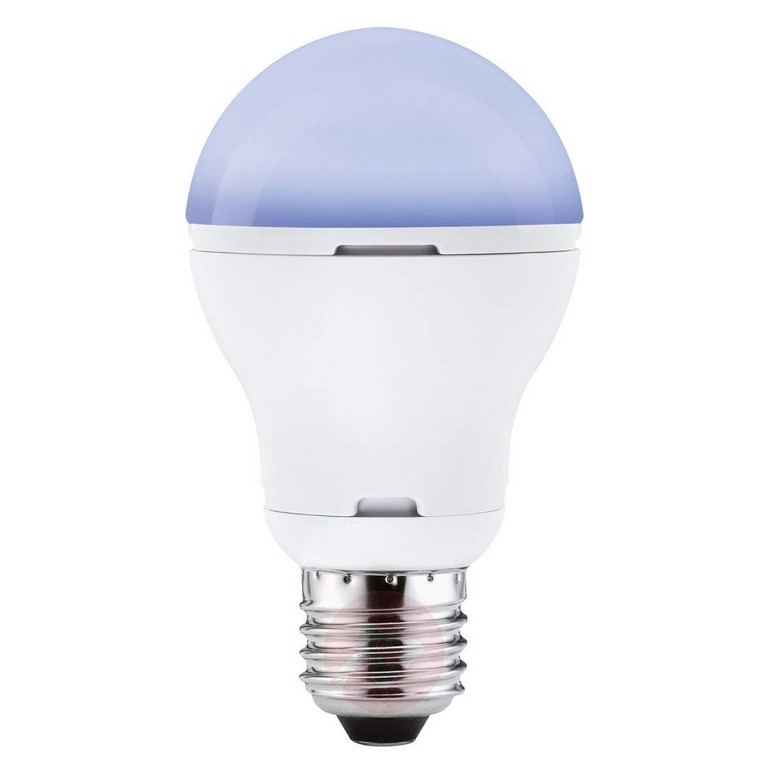 E27 5w Led Lamp Zwart Licht Lampen24nl pertaining to dimensions 1200 X 1200