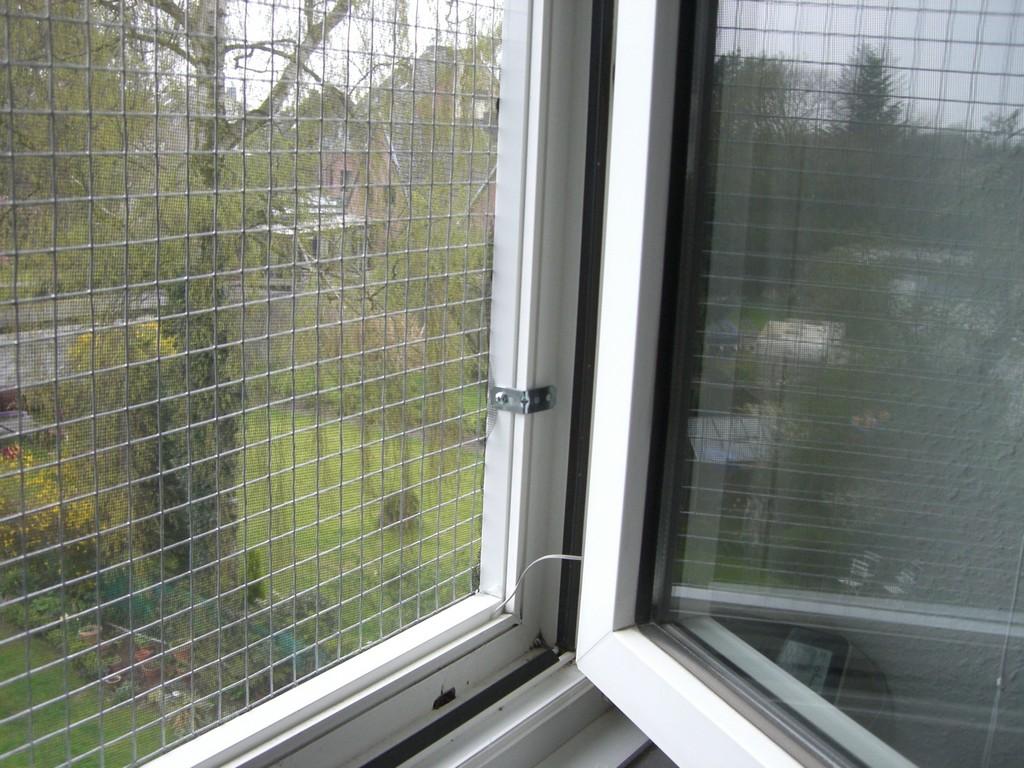 Katzennetz Fr Fenster Sicherheitsrahmen Zur Fenstersicherung with sizing 2560 X 1920