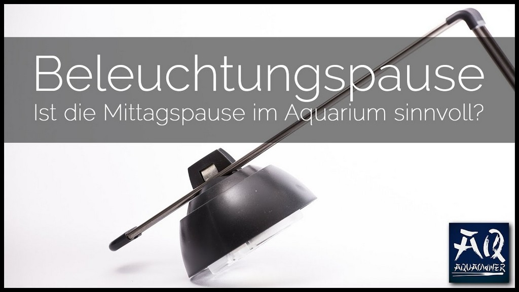 Mittagspause Ja Oder Nein Solltest Du Deine Beleuchtung Mittags with measurements 1280 X 720