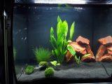 Aquarium 500l Wohnzimmer Schn Aquarium 500l Wohnzimmer K3f inside sizing 4128 X 3096