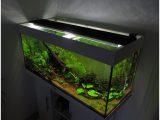 Aquarium Beleuchtung Led 24522 Aquarium Led Beleuchtung Selber Bauen with regard to measurements 1790 X 1430