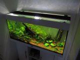 Aquarium Led Beleuchtung Selber Bauen Schullebernds Technikwelt intended for proportions 1024 X 768