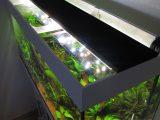 Aquarium Led Beleuchtung Selber Bauen Schullebernds Technikwelt throughout proportions 1024 X 1365