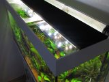 Aquarium Led Beleuchtung Selber Bauen Schullebernds Technikwelt throughout size 1024 X 1365
