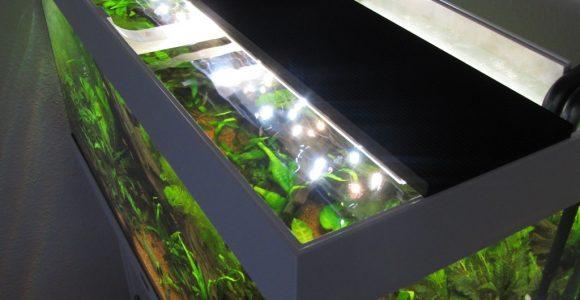 Aquarium Led Beleuchtung Selber Bauen Schullebernds Technikwelt with regard to measurements 1024 X 1365