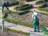 Beautiful Ideas Garten Und Landschaftsbau Berlin Ausbildung for sizing 1500 X 1004