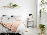 Blumen Und Pflanzen Im Schlafzimmer Schdlich Oder Gut Fr Den Schlaf for size 1520 X 1424