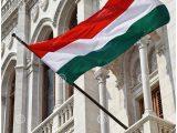 Fenster Aus Ungarn 551426 Ungarische Flagge Im Fenster Des inside dimensions 1300 X 1370