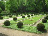 Fileenglischer Garten Berlin Tiergarten Img 8398 inside measurements 3264 X 2448