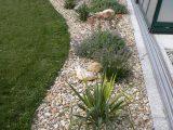 Gartengestaltung Mit Steinen Und Kies Bilder Impressum Baum Best intended for sizing 800 X 1067