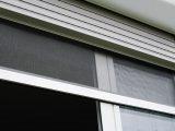 Insektenschutz Rollo Frs Fenster Rojaflex intended for sizing 1200 X 668