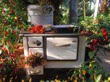 Kostenlose Foto Blume Dekoration Lebensmittel Herbst Hinterhof within dimensions 4608 X 3456