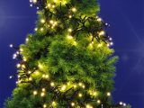 Led Weihnachtsbaum Tannenbaum Beleuchtung Cluster Real within proportions 925 X 1024