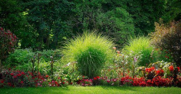 Pflegeleichte Bsche Garten Best Of Auenanlage Planen 5 Tipps Um within proportions 1280 X 720