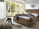 Schlafzimmer Komplett Auf Rechnung Kaufen Zamora In Bezug Auf pertaining to proportions 1600 X 874