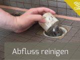 Siphon Dusche Reinigen Elegant Abfluss Reinigen Badewanne Und Dusche intended for sizing 1920 X 1081