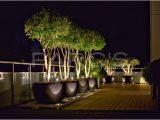 Terrasse Beleuchtung 51906 Beleuchtung Terrasse Ohne Strom Zimerfrei regarding sizing 5496 X 3670