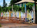 Tolle Kreativer Sichtschutz Garten Huv Design Genial Im Das Groae within size 1024 X 819