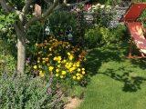 Try And Error Eine Gartenvorstellung Und Viele Fragen Mein within proportions 800 X 1067