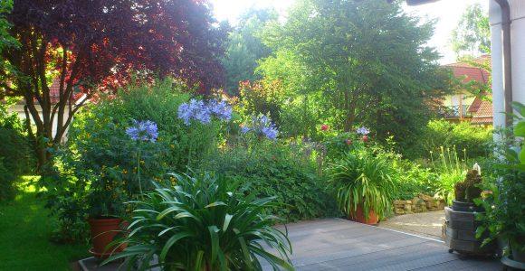 Vorgarten Neu Gestalten Anlegen Neu Garten Anlegen Bilder throughout size 3264 X 2448