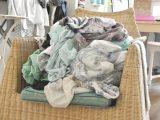 Wie Oft Sollte Man Wsche Waschen Rosanisiert within proportions 2592 X 3872